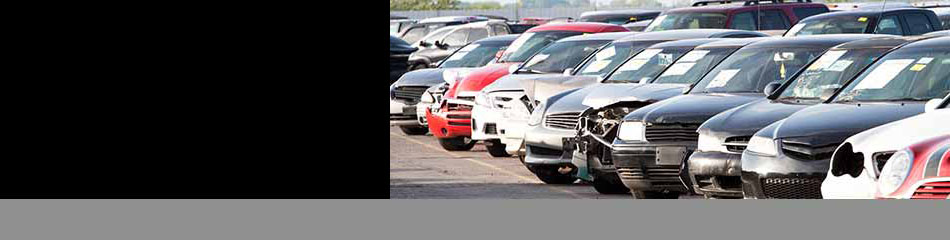 San Diego Junkyard Buy Cars